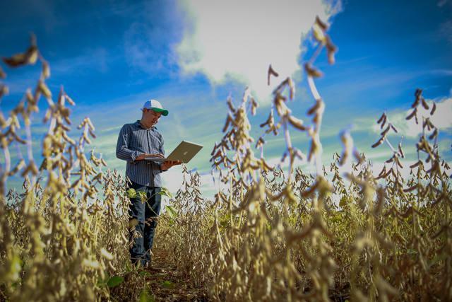Como a Tecnologia Impacta o Pequeno Agricultor