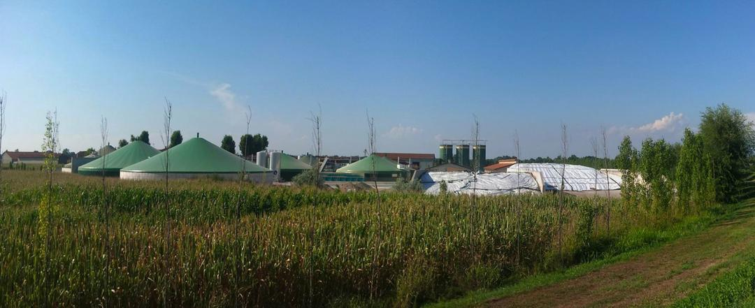 A origem e evolução do Biogás rural no Paraná