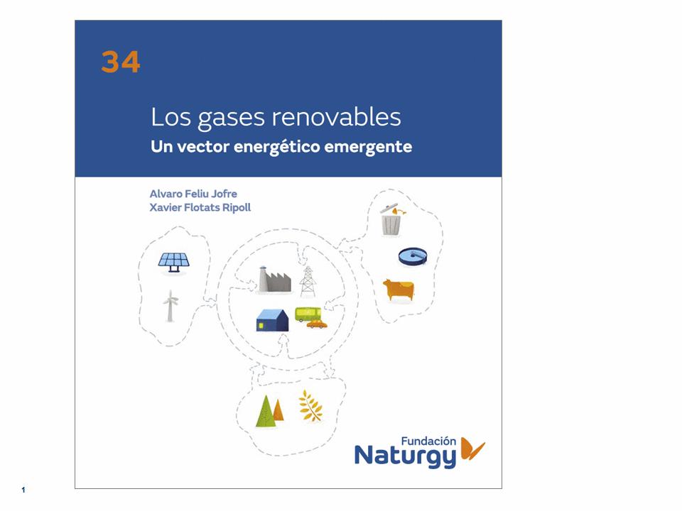 Webinar de apresentação do livro 'Los gases renovables: un vector energético emergente'