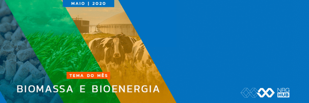 Hub de Energia contribui com o impulsionamento do setor de Biomassa e Bioenergia