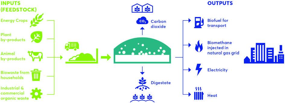 Biometano e Mobilidade Limpa