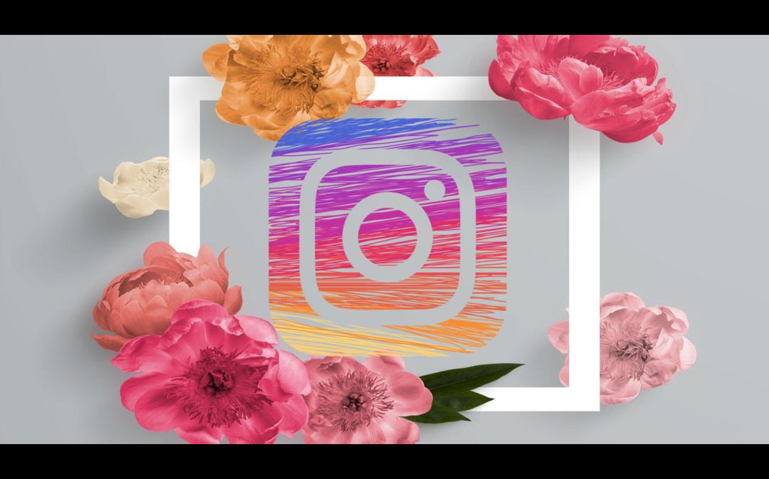 6 Dicas para divulgar seu Espaço de Beleza no Instagram