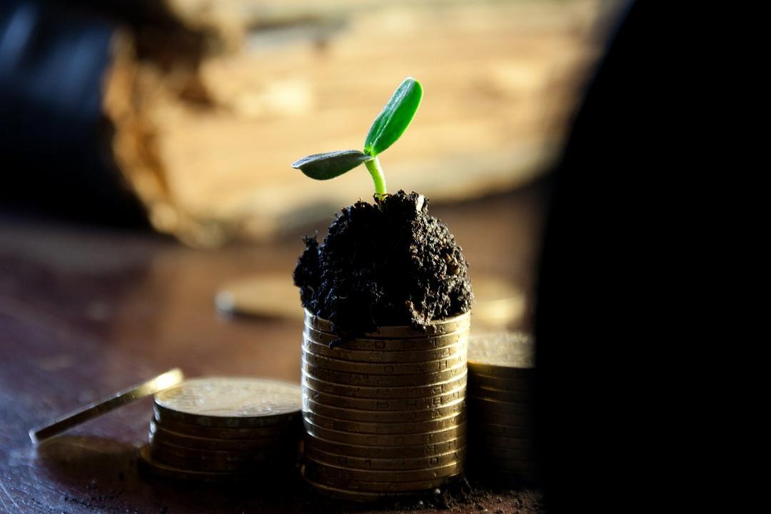 3 dicas em lucratividade