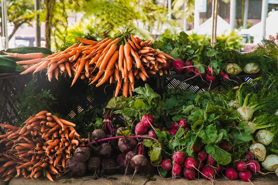 Pesquisa aponta que 90% brasileiros estão dispostos a consumir mais produtos à base de plantas