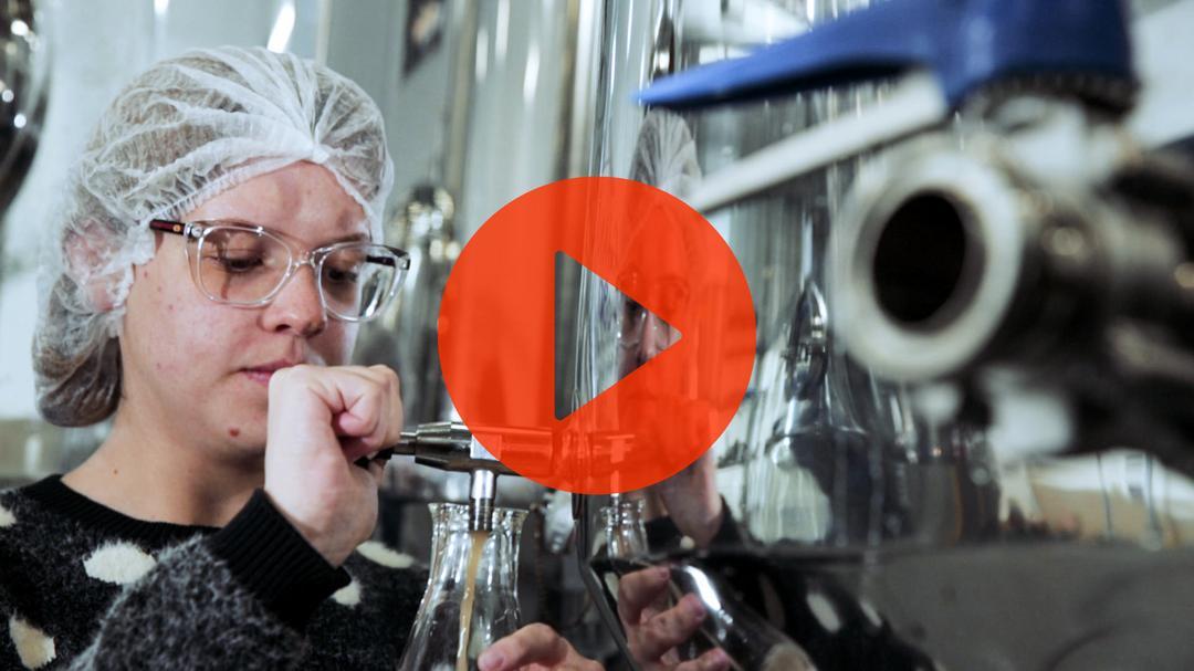 A arte de fazer cerveja (conteúdo com vídeo)