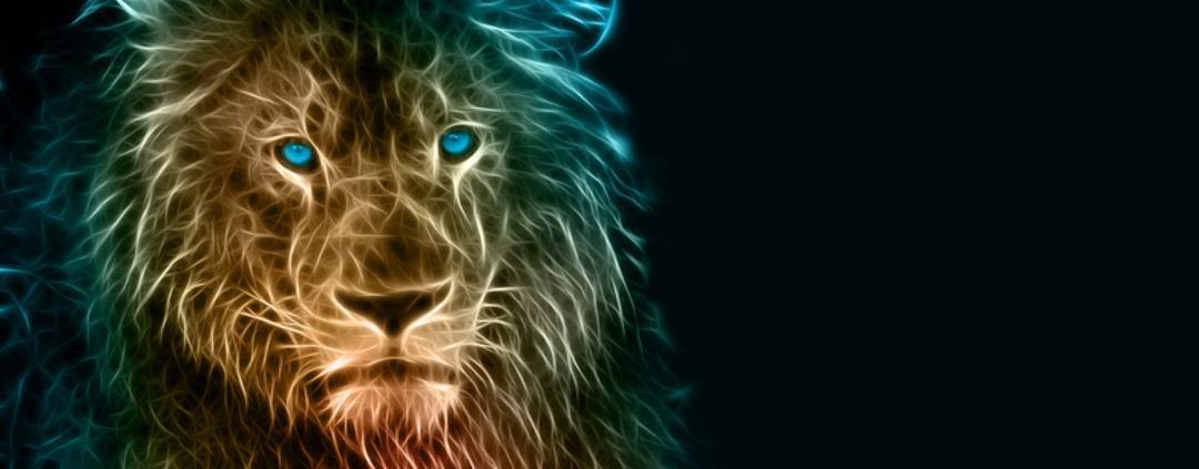 Líder: nasce pronto ou se faz?