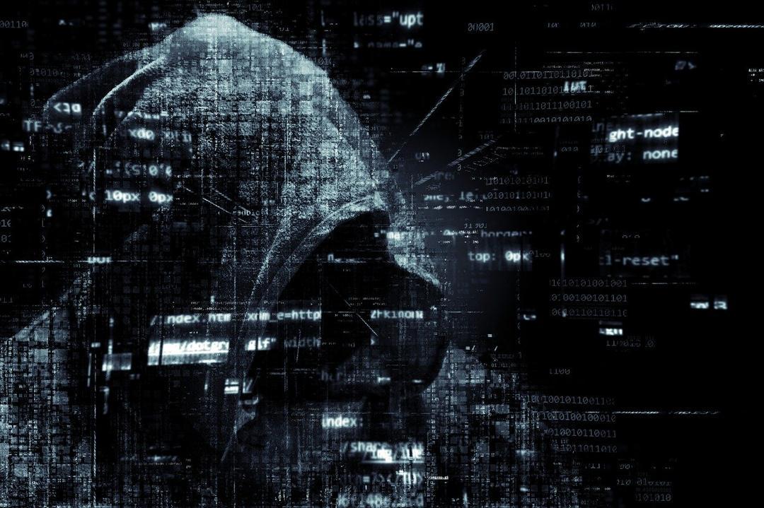 Segurança de dados: Como organizações devem se proteger?