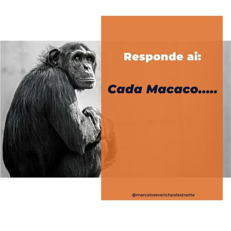 CADA MACACO...🐵