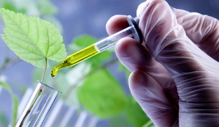 7 ideias de negócios em biotecnologia