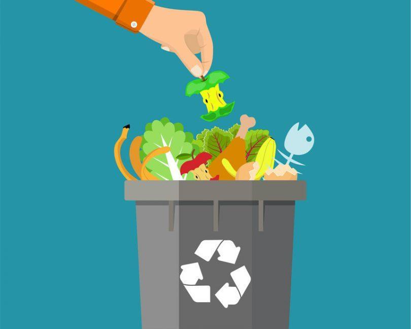 Quanto Vale 1/3? Uma reflexão ambiental, social e econômica da perda e do desperdício de alimentos