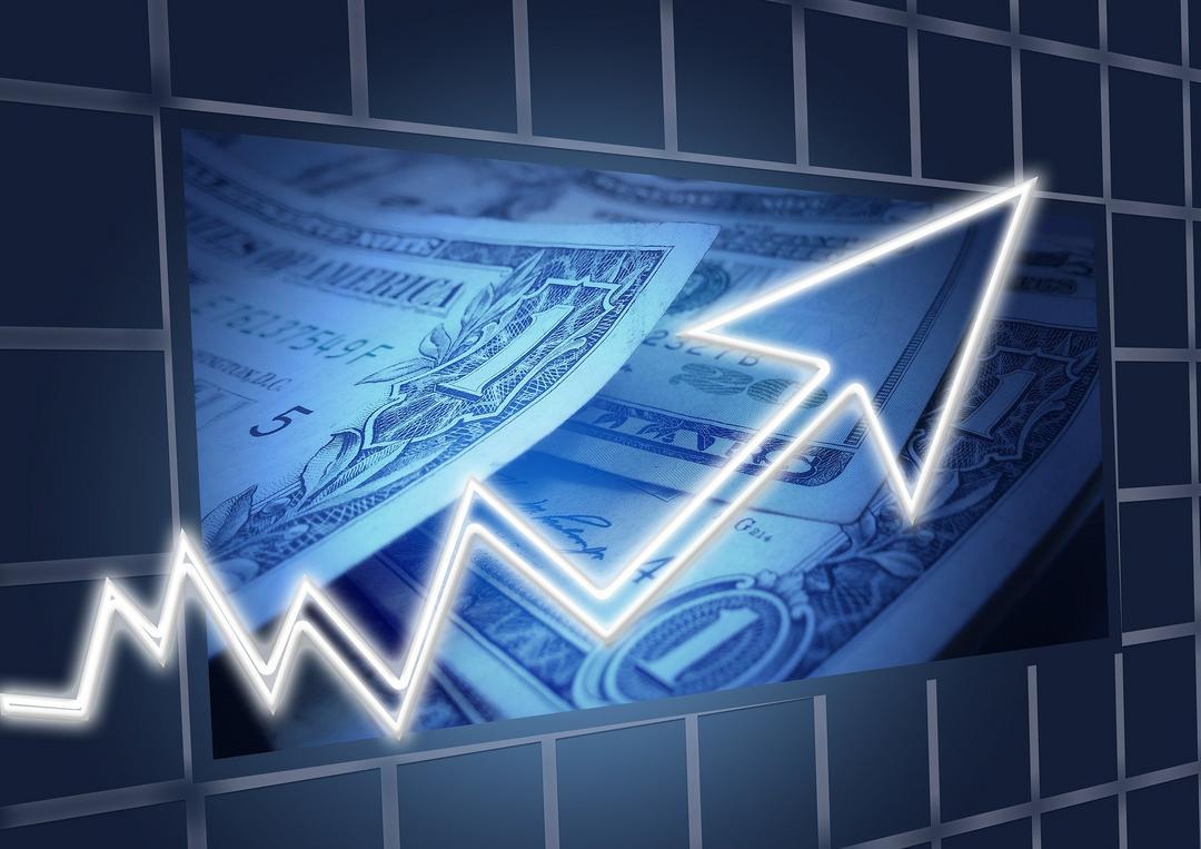 Aprenda a controlar seu dinheiro e vencer a crise em 7 passos!