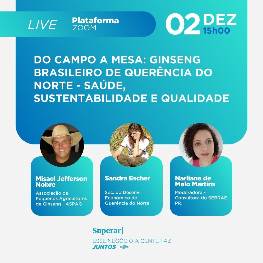 O Ginseng Brasileiro de Querência do Norte-Saúde, sustentabilidade e qualidade