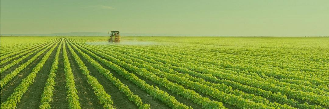 A importância da Agricultura Familiar para o  Brasil