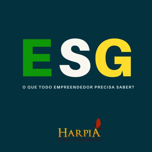 ESG na Prática: 05 respostas para tornar seu negócio mais sustentável.