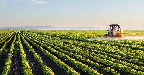 Influência do Agronegócio nos Mercados