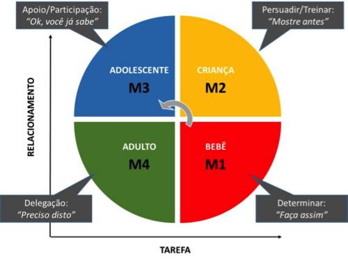 O impacto da liderança situacional no processo de aprendizagem