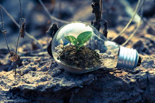 Tecnologia verde: Uma tendência para o futuro
