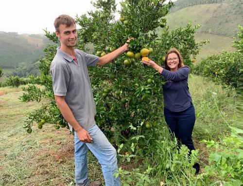 Parceria 100% sustentável com produtores de Cerro Azul resulta em aproveitamento total da ponkan