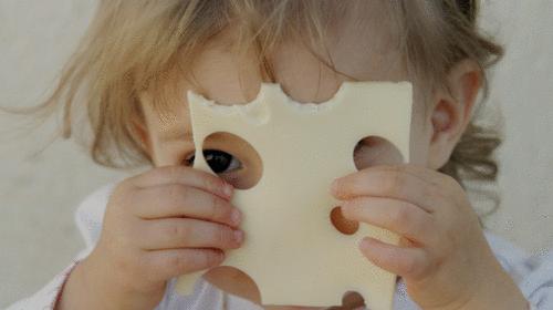 Quem furou meu queijo?