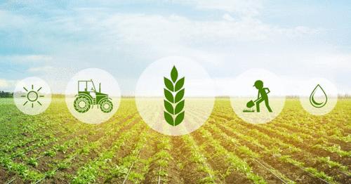 Tecnologias e a Gestão no Agronegócio