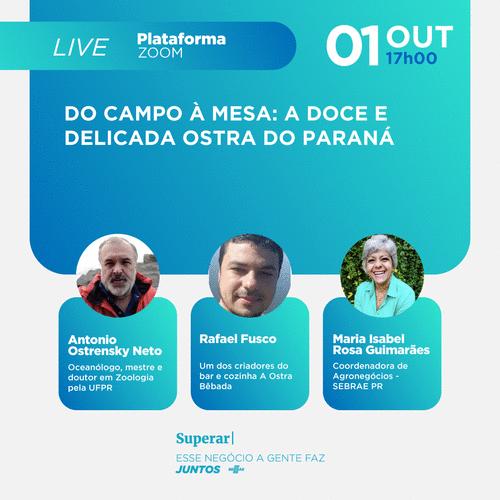Live: A doce e delicada ostra do Paraná