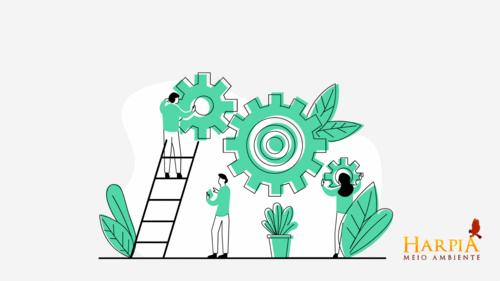 Investimentos em Sustentabilidade nas Empresas: Como tratar do assunto como o seu CFO