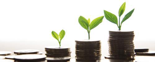 Quero crescer e preciso organizar as finanças. Por onde começar?