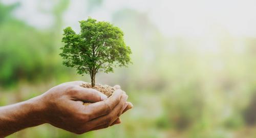 Qual a responsabilidade ambiental do seu negócio?