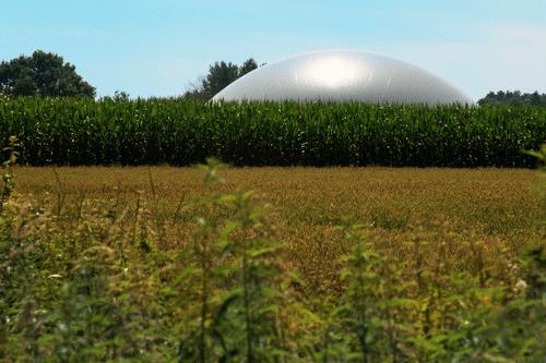 7 Key findings do relatório da Agência Internacional de Energia sobre biogás e biometano