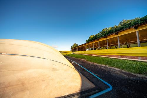 Fórum online debate potencial da produção, aponta soluções e proporciona negócios para o biogás e biometano