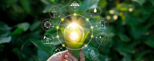 Dicas para apostar no Empreendedorismo Sustentável