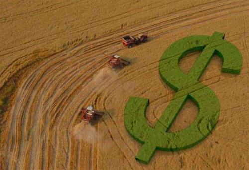 O agronegócio no Brasil é o principal motor da retomada da economia