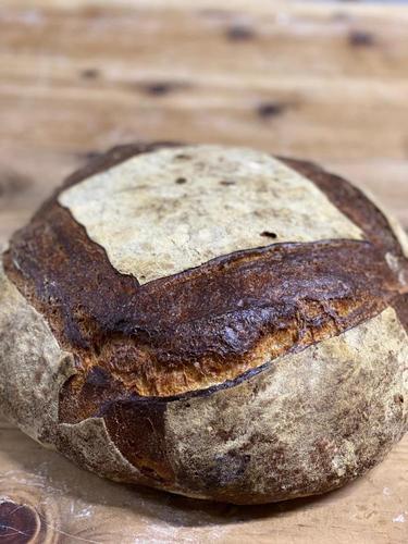 Paraná o exemplo de que bom pão se produz com farinha de qualidade