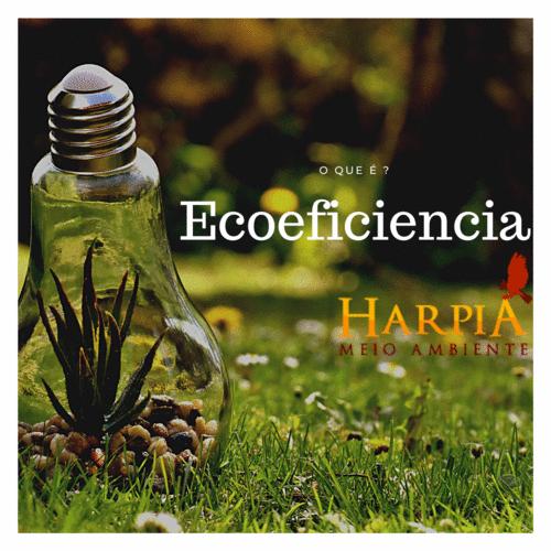 ECOEFICIÊNCIA: como tornar um negócio sustentável?