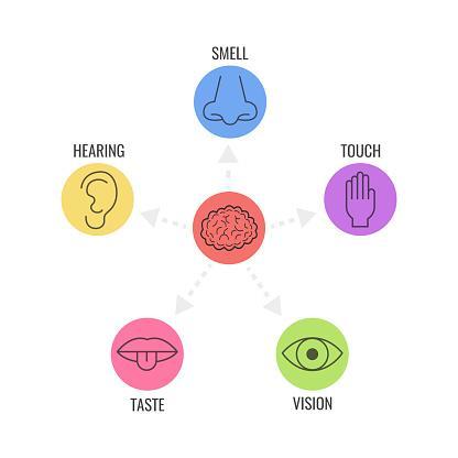 O que é o marketing sensorial?