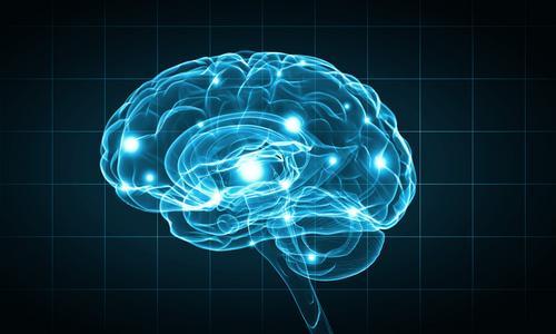 [Conteúdo com vídeo] Neurobiologia das emoções relacionada ao aspecto de liderança