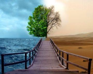 Empresas lucrativas, rentáveis e sustentáveis no Agro: A sua é?